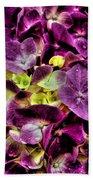 Purple Hortensia After Summer Rain Beach Towel