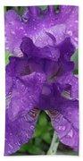 Purple Iris After The Rain Beach Towel