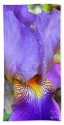 Purple Iris Macro Beach Towel
