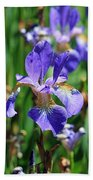 Purple Iris Beach Sheet