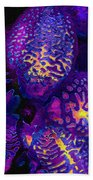 Purple Orchid Abstract Beach Towel