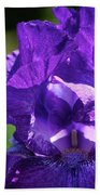 Purple Pandora Beach Towel