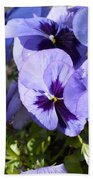 Purple Pansies Beach Towel