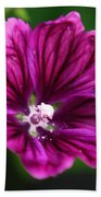 Purple Hollyhock Beach Towel