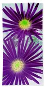 Purple Passion - Photopower 1604 Beach Towel