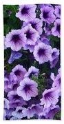 Purple Petunias Beach Towel