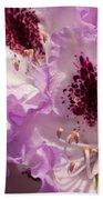 Purple Rhodo Beach Towel
