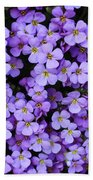 Purple Rockcress Beach Towel