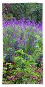 Purple Salvia In The Garden Beach Sheet