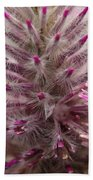 Purple Spike Beach Towel