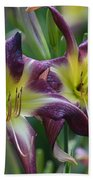Purple Stargazers Beach Towel