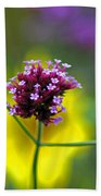 Purple Verbena Flowers Beach Towel