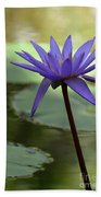 Purple Water Lily In The Shade Beach Towel