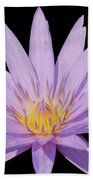 Purple Water Lily Beach Towel