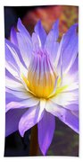 Purple Waterlily With Fall Lilypads Beach Towel