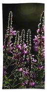 Purple Wild Flowers - 2 Beach Towel