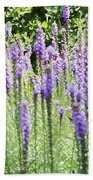 Purple Wild Flowers 2 Beach Towel