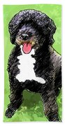Pw Dog Beach Towel