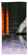 Quarry Lake Reflections Beach Towel