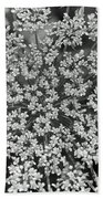 Queen Anne's Lace In Black And White Beach Towel