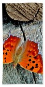 Question Mark Butterfly Beach Towel