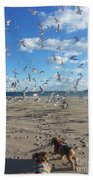 Quick Fly Away Beach Towel
