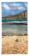 Rabbit Island Beach Towel