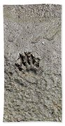 Raccoon Print Beach Towel