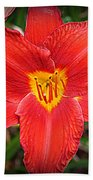 Radiant In Red - Daylily Beach Towel