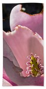 Ragged Magnolia Beach Towel