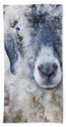 Raggedy Goat Beach Towel