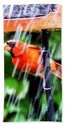 Rain Bird Beach Towel