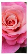 Rain Drenched Rose Beach Towel
