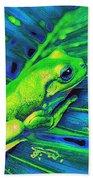 Rain Forest Tree Frog Beach Towel