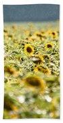 Rain On The Sunflowers Beach Towel