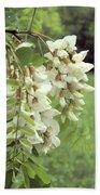 Rain-spangled Locust Flowers Beach Towel
