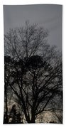 Rain Storm Clouds And Trees Beach Towel
