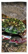 Rainbow Crab Beach Towel