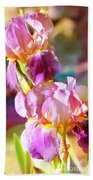 Rainbow Irises Beach Towel