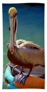 Rainbow Pelican Beach Towel by Karen Wiles
