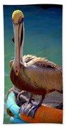 Rainbow Pelican Beach Towel