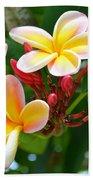 Rainbow Plumeria - No 4 Beach Towel