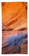 Rainbow Rocks Dead Bush #1 Beach Towel