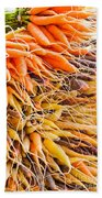 Rainbow Roots Beach Towel