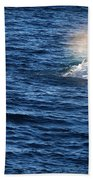 Rainbow Spout Beach Towel