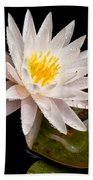 Raindrop Water Lilly Beach Towel