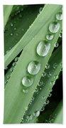 Raindrops On Blades Of Grass Beach Towel
