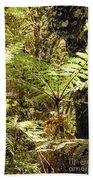 Rainforest Color Beach Towel