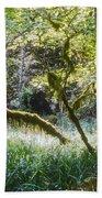 Rainforest Landscape Beach Towel
