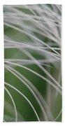 Rainforest Palm Tree Leaf Close Up  Beach Sheet